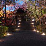桜と紅葉の寺 三井寺(園城寺)