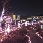 大津市びわ湖大津館のライトアップ